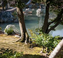Japanese Garden by photoeverywhere