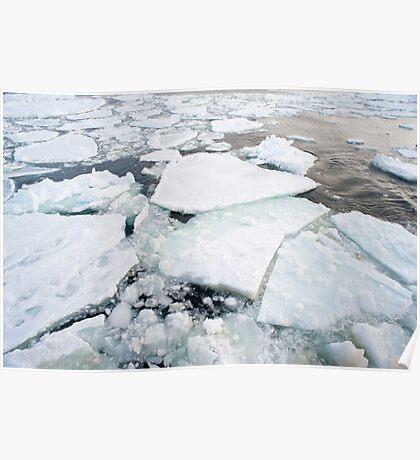 Icebergs Backdrop Poster