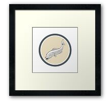 Trout Swimming Cartoon Circle Framed Print