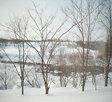 hokkaido winter by photoeverywhere