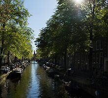 Amsterdam Spring - Green, Sunny and Beautiful by Georgia Mizuleva