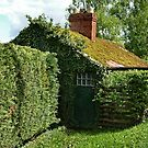 Ivy Cottage by Yampimon