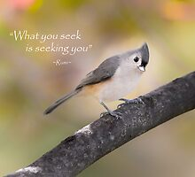 What You Seek by Bill Wakeley