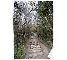 Steep steps Poster