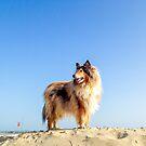 Sunny Side Beach  by BellatrixBlack
