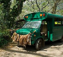 Grass skirted bus by photoeverywhere