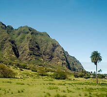 Koolau Range by photoeverywhere