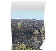 Lava Field landscape Poster