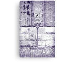 Iced Stroller Parking  Canvas Print