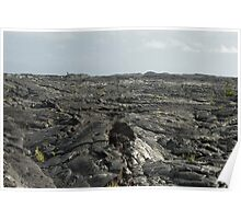 Solidified Lava Fields Poster