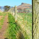 Roseberry Topping by apple88