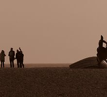 The Scallop. Silhouette and Sepia by wiggyofipswich