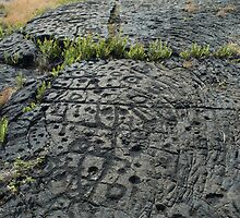 Puu Loa Petroglyphs by photoeverywhere