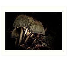 In the dark forest Art Print
