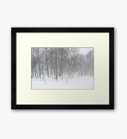 winter snowstorm Framed Print