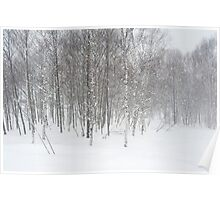 winter snowstorm Poster