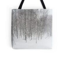 winter snowstorm Tote Bag