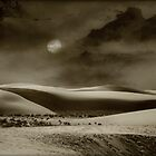 Dunes of White Sands... by Sheryl Gerhard