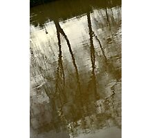 reflexo abstrato Photographic Print