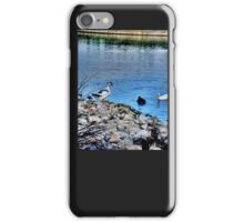 the lake with geese iPhone Case/Skin