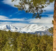 Colorado Rocky Mountain View by Bo Insogna