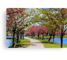 Spring Tree Blossoms Canvas Print