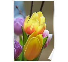 Happy Spring Tulips Poster