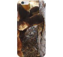 I Think I Can iPhone Case/Skin