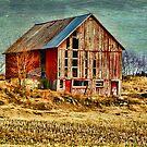 Rural Rustic Vermont Scene by Deborah  Benoit