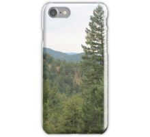 Stunning View iPhone Case/Skin