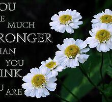 You are Stronger than You think You are by Jan  Tribe