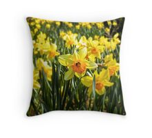 Spring is Here! Throw Pillow