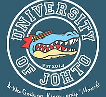 University of Johto by arsfera