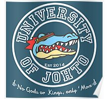 University of Johto Poster