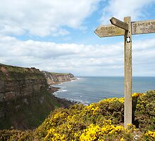 Signpost on Cleveland Way by photoeverywhere