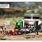 Nut Farm by Bean Strangeways