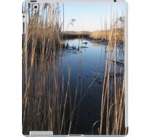 Wetlands At Low Tide iPad Case/Skin