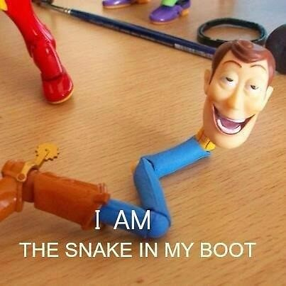 I am the snake in my boot by MarkWahlberg