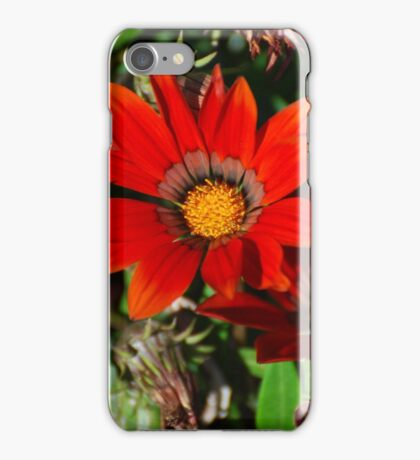 Fiery Daisies iPhone Case/Skin