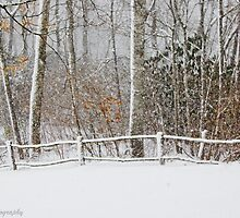 Snow on the fence  by KSKphotography