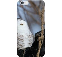 Rising from the ruins iPhone Case/Skin