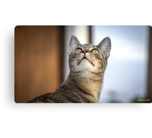Behold the Sky Canvas Print
