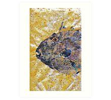 Gyotaku - Triggerfish - Oldwench -  Diptych 1  Art Print