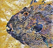 Gyotaku - Triggerfish - Oldwench -  Diptych 1  by IslandFishPrint