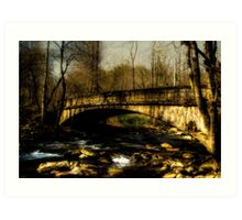 Bridge in The Great Smoky National Park Art Print