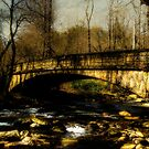 Bridge in The Great Smoky National Park by JKKimball