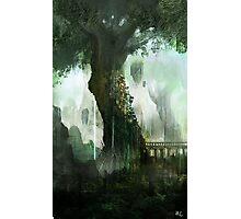 Elven Tree Photographic Print