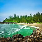 Coast of Pacific ocean in Canada by Elena Elisseeva