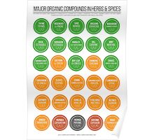 Organic Compounds in Herbs & Spices - Version 2 Poster
