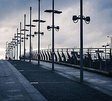 Blue Morning by Stevie B
